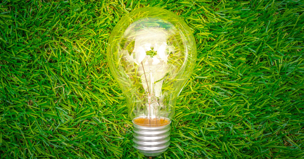Light bulb in the grass generating an idea about boosting sustainability with Swittons.